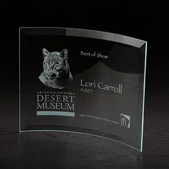 Icon Large Glass Award